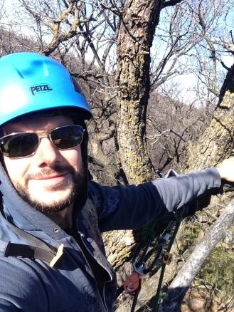 Justins Tree Service